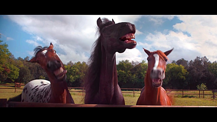 VW Trailer Assist is no laughing matter - just ask these horses