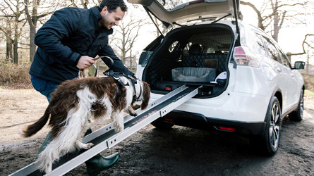 Nissan X-Trail 4Dogs is... for dogs