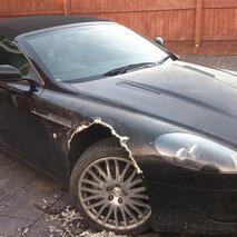 Dog Chews Through UK Man's Aston Martin