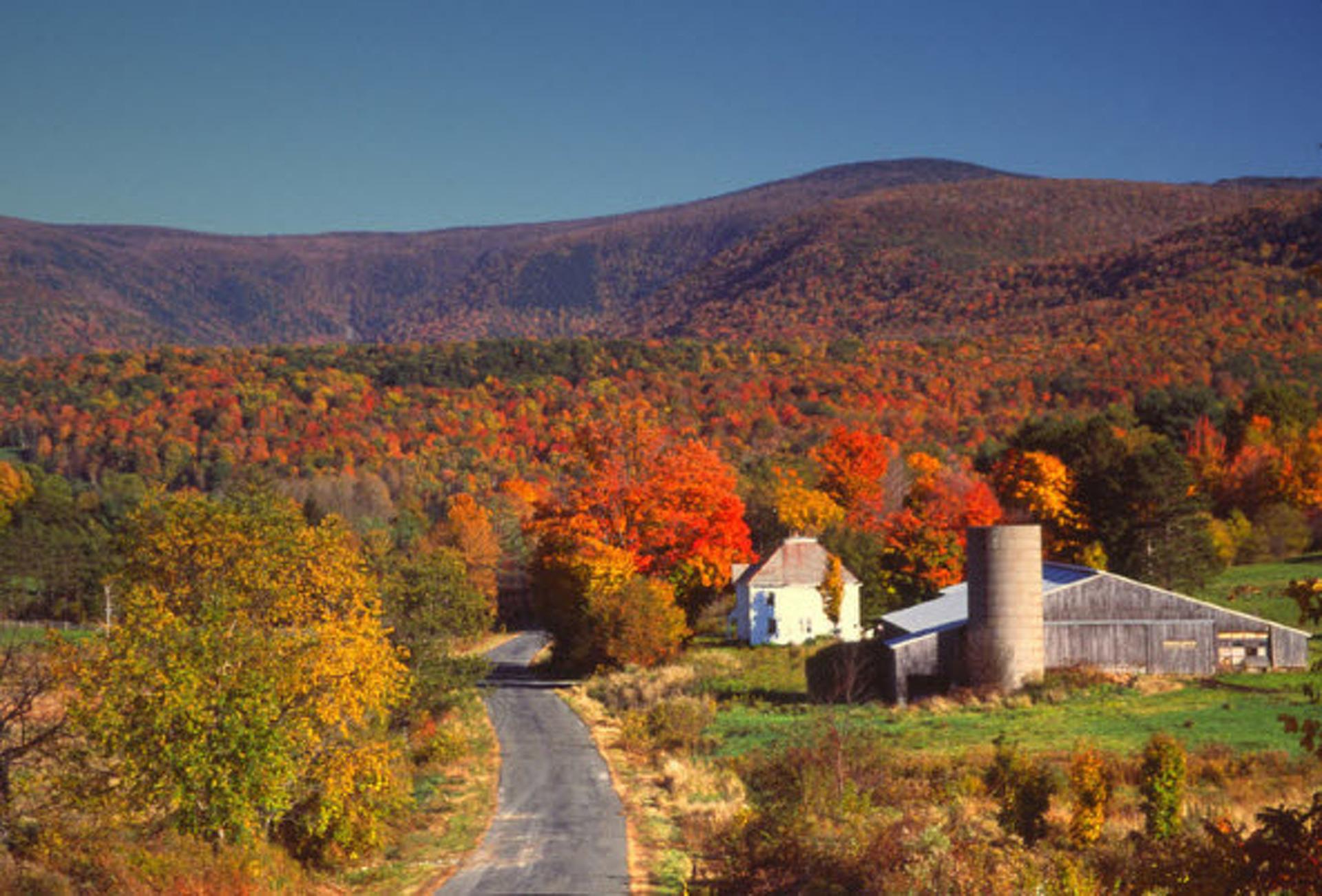 New England Foliage Tour for Dudes