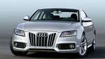AK Car-Design Audi A5 grille insert