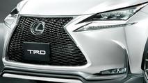 Lexus NX TRD