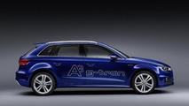 2013 Audi A3 Sportback g-tron
