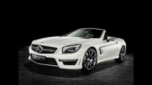 Mercedes SL 63 AMG World Championship 2014 Collector's Edition