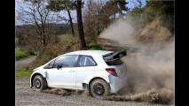 Rückkehr in den Rallye-Zirkus