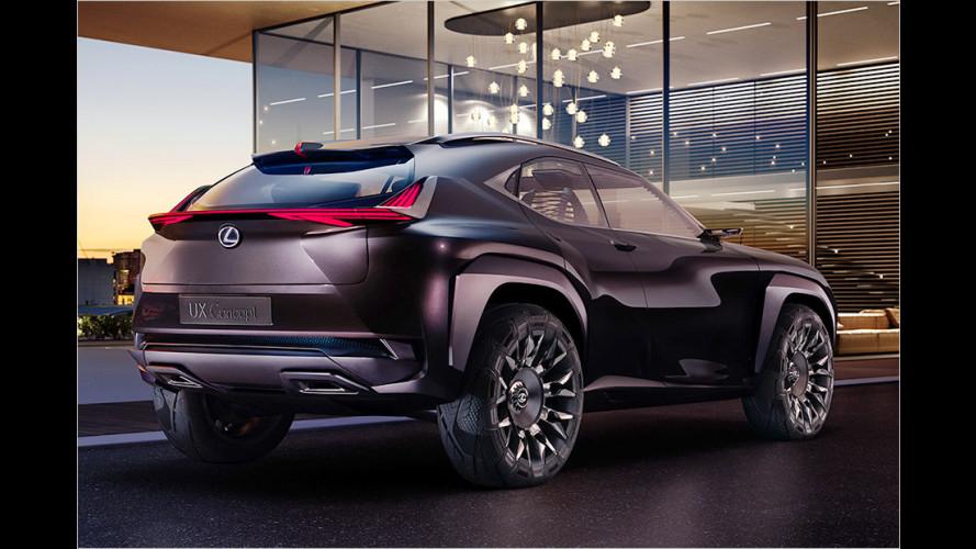Lexus UX: Kompakte Kante