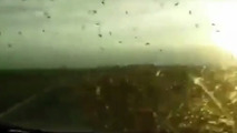 Mosquito swarm traps men in car