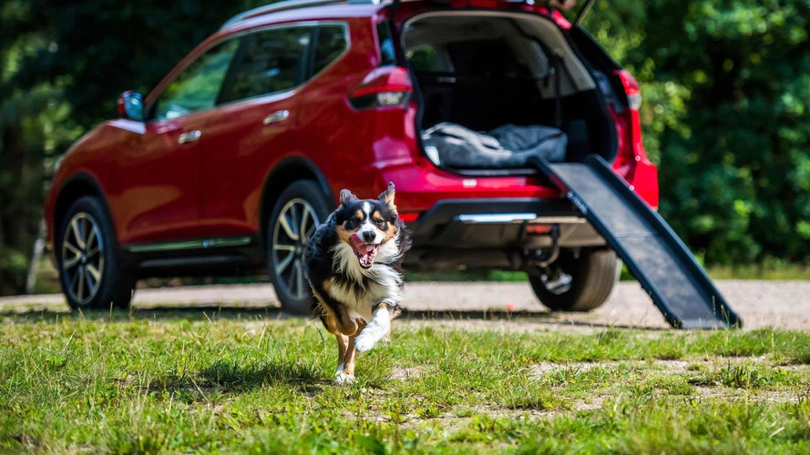 This Nissan Paw Pack Is Perfect For Your Pooch