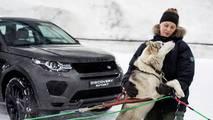 Dog power v horsepower Land Rover Discovery Sport