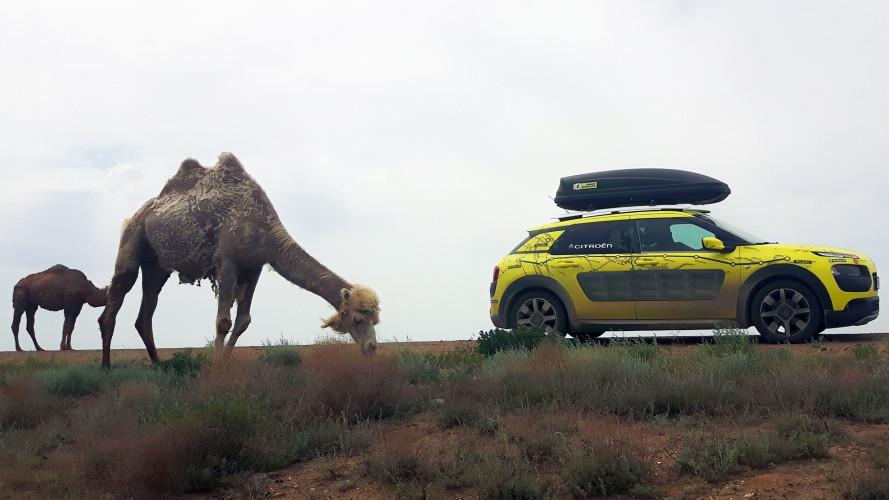 Citroen C4 Cactus, più di 17.000 km in 40 giorni [VIDEO]