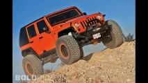 Hauk Designs Jeep Rock Raider