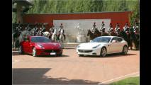 Pferde für die Königin