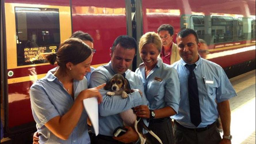 Trasporti, anche i cani di taglia grande possono viaggiare sui treni Italo ad Alta Velocità