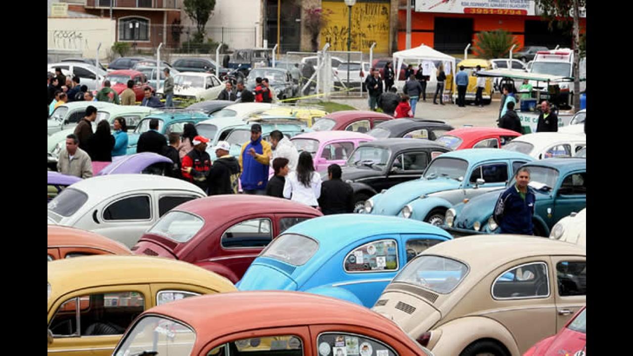 Encontro marca o Dia do Fusca em Jacareí - SP