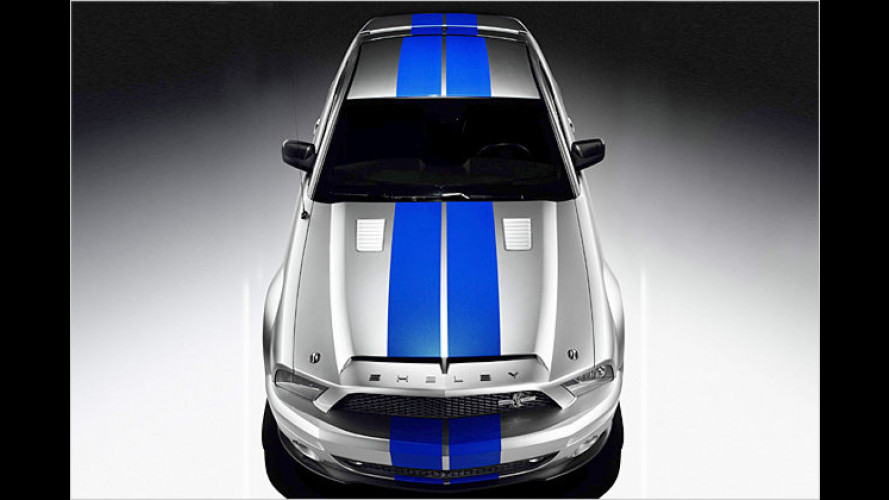 Vorsicht bissig: Ford bringt den Shelby GT500KR