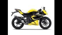 Nova Kawasaki 250 RR traz motor monocilíndrico para custar menos