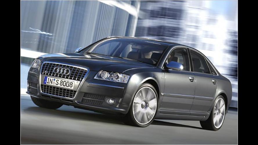Audi S8 mit Lamborghini-Genen: Stier im Luxus-Dress