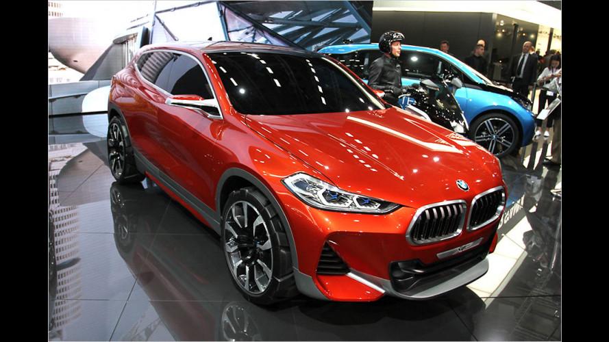 Sport-SUV auf X1-Basis