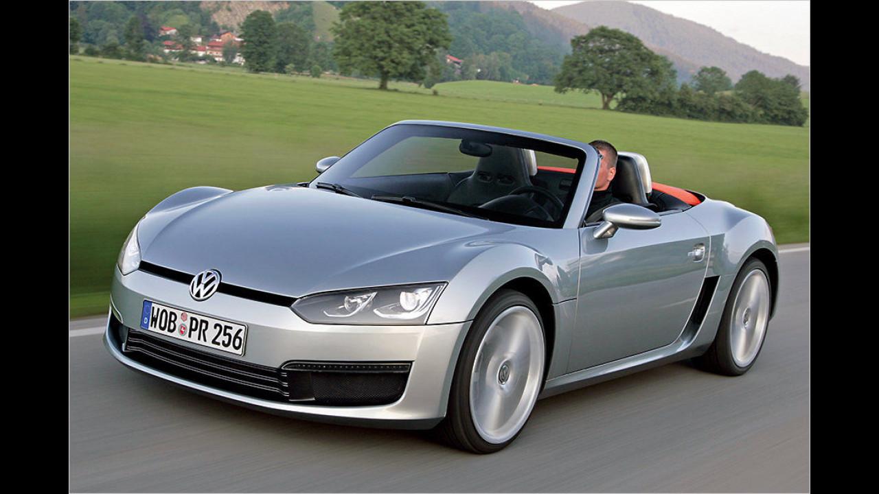 VW Bluesport (2009)