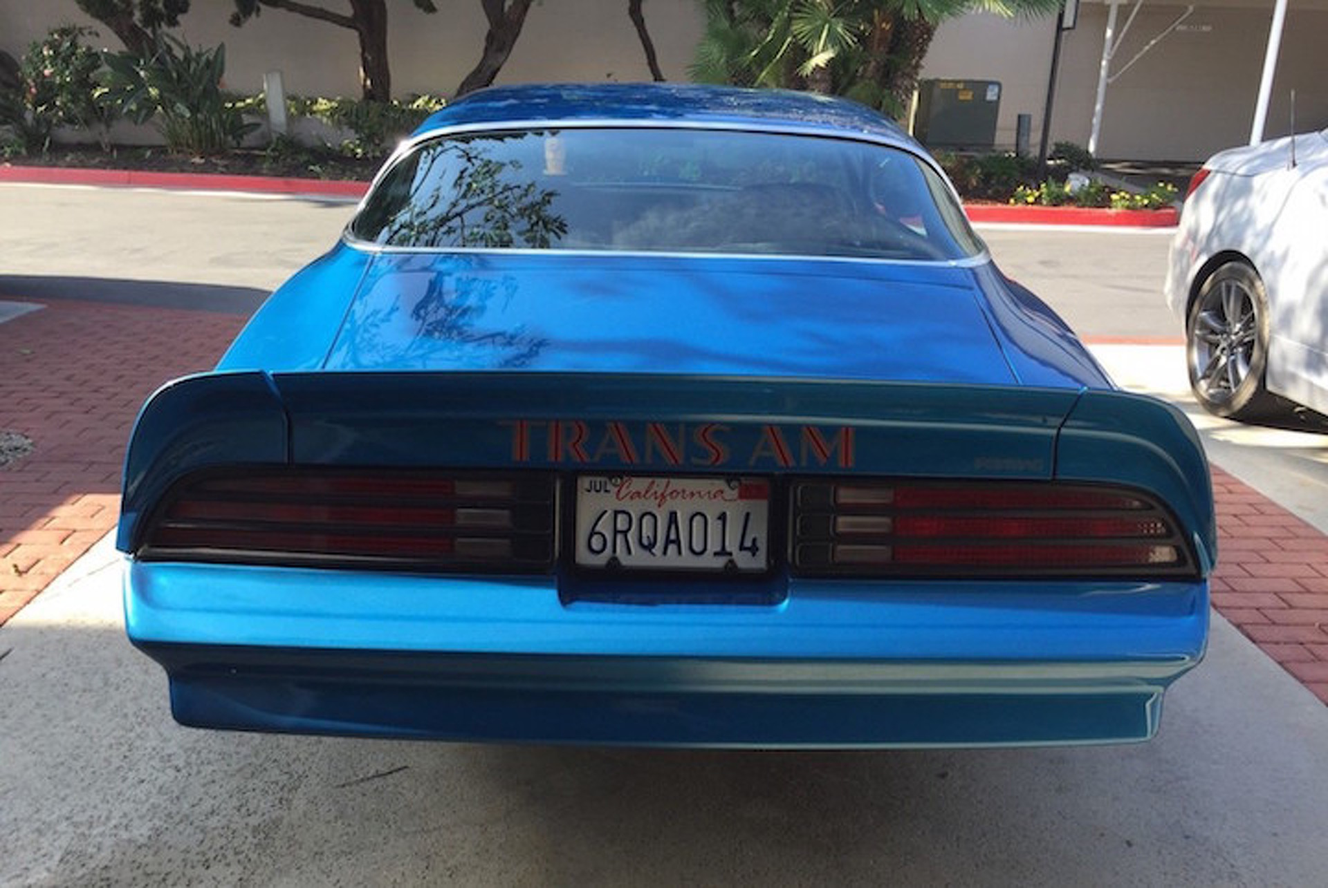 Brilliant Blue 1978 Pontiac Trans Am Needs a New Home