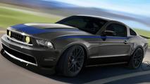 2010 Ford Mustang by Vaughn Gittin Jr.