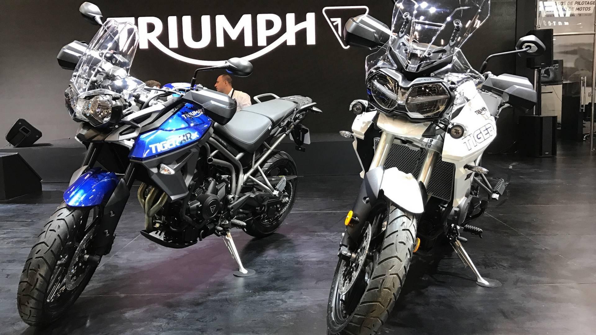 Linha Triumph 2018